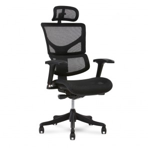 X-Chair X1 Flex Mesh Task Chair with Headrest (Black)